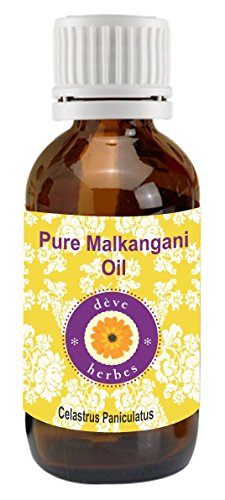 Pure Malkangani oil 30ml 100% Natural Cold presssed & Therapeutic Grade (Celastrus paniculatus) Malkangni Oil (jyotishmati Oil)