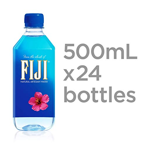 Fiji Natural Artesian Water, 16.9 Fl Oz (Pack of 48)