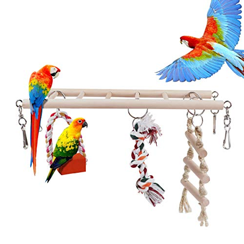 RCruning-EU Juguetes para pájaros Accesorios de Jaula...
