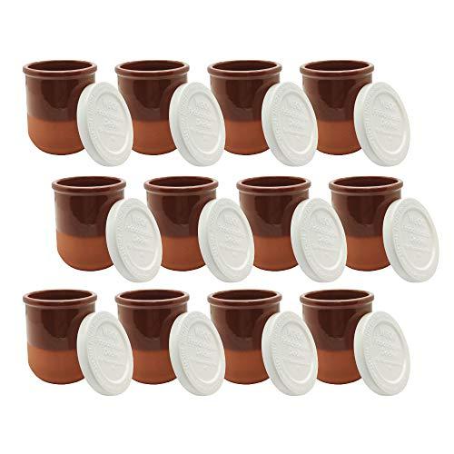 Vasos yogurtera de cristal con tapa pack de 12 botes para yogurtera, tarros para postres recipiente para moulinex, lidl, severin, braum y resto de yogurteras (Tapa blanca) (175)