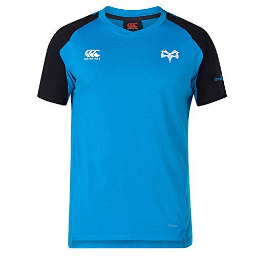 Canterbury 2018-2019 Ospreys Rugby Vapordri Performance Cotton Tee (Blue)