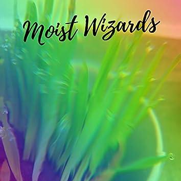 Moist Wizards