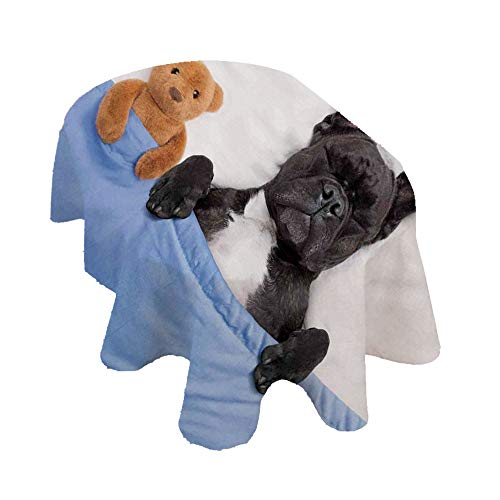 Animal Decor Oval Tablecloth,French Bulldog Sleeping with Teddy Bear in Cozy Bed Best Friends Fun Dreams Image Polyester Table Cloth,60x104 Inch,for Indoor and Outdoor Events Multi