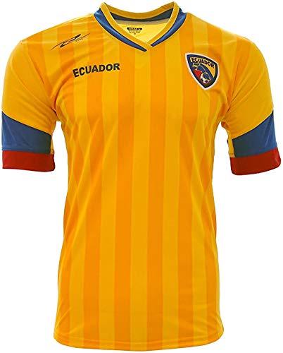 Ecuador New Arza Soccer Jersey Yellow/Blue 100% Polyester (Small)