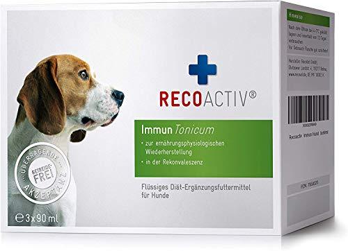 RECOACTIV® Immun Tonicum für Hunde, 3 x 90 ml, zur Vorbeugung und Stärkung des Immunsystems vom Hund, diätischer Appetitanreger für Hunde bei Appetitlosigkeit