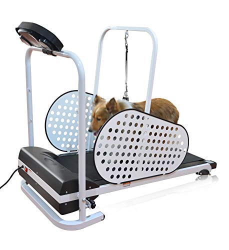 SHELANDY Pet Treadmill | Smart and Motorized Treadmill for Small & Medium Dogs