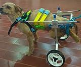 Silla de Ruedas Ajustable para Perro,con Altura de la Cadera: de 20,32 cm a 66,04 cm, Peso de 0 a 45...