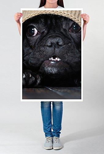 Best for home Artprints - dierfotografie - hondenhoofd onder het plafond - fotodruk in haarscherpe kwaliteit LEINWANDBILD gespannt 90x60cm