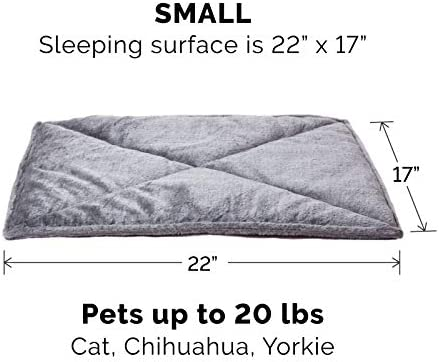 Accesorios para gatos _image4