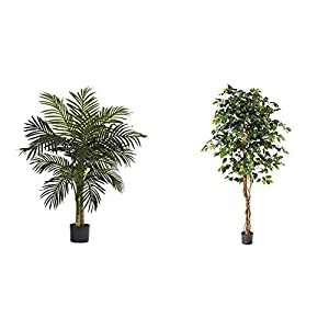 Silk Flower Arrangements Nearly Natural 5357 4ft. Golden Cane Palm Tree,Green & 6ft. Ficus Artificial Trees, 72in, Green
