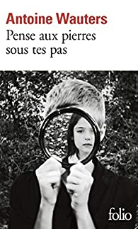 Pense aux pierres sous tes pas par Antoine Wauters