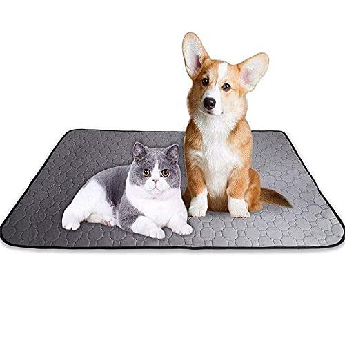 VRQG Empapadores de adiestramiento para Perros, Toallitas de Entrenamiento para Mascotas-Lavable, súper Absorbente, Impermeable y Antideslizante, Adecuado para Mascotas de tamaño (2 tabletas)