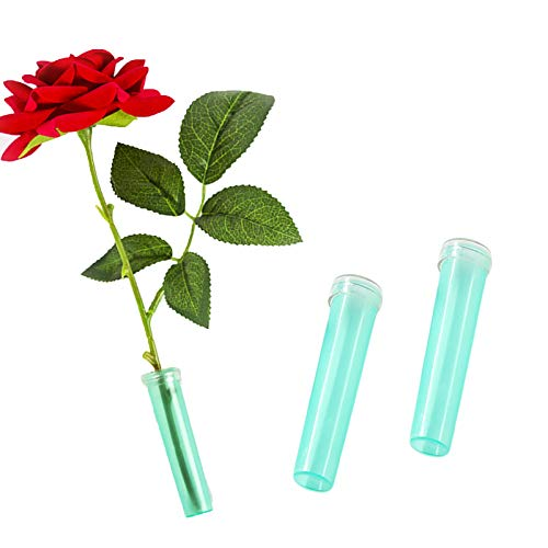 Wang-Data 100pcs Fresh Flower Rhizome Tube Aquatic Rose Carnation Water Container Wedding-0.8 x 2.8 inch (Diameter x Height)