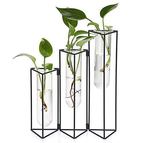 SUMTREE Blumenvase aus Glas und Metall 3 Gitter Reagenzglas Pflanzenhalter Glasvase für Zuhause Café Zimmer Tisch Party Hochzeit Dekoration(Schwarz)