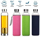 Winallc 550ml Portable and Stylish Glass Tea Bottle with Stainless Steel Filter Basket Tea Infuser...