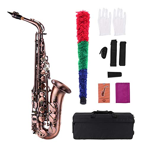 Sassofono contralto in mib piegato in bronzo rosso di alta qualità Sassofono in mi bemolle con motivo intagliato Strumento a fiato con custodia Guanti Panno di pulizia Spazzola Cinghie per sax Ance
