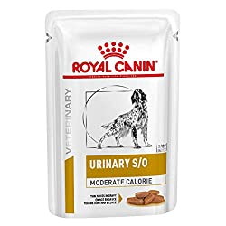 Supports your dog's urinary tract