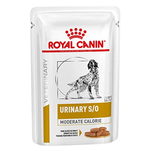 ROYAL CANIN Urinary S/O Moderate Calorie Wet Hund - 12 x 100 g