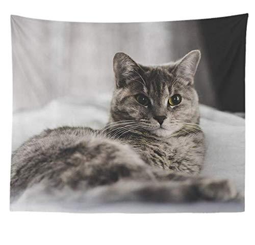 Decoración del hogar Realista Animal Rock Cat Tapiz Tapiz de Pared Decoración...