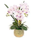 FOTGL Orquídeas de Seda de Bonsai Artificial Phalaenopsis con jarrón Dorado, arreglo de Flores de orquídeas Falsas para la Mesa de Centro de la Mesa Decoración de la Oficina (Color : Light Purple)