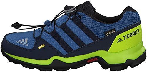 adidas Unisex-Kinder Terrex GTX K CM7704 Trekking- & Wanderhalbschuhe, Blau (Azretr/Maruni/Limsol 000), 32 EU