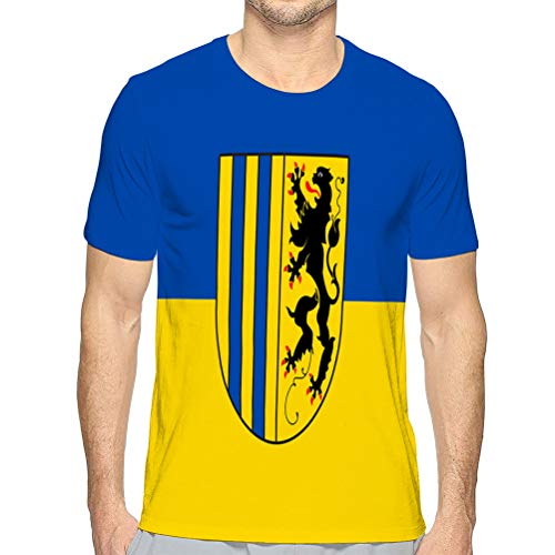 Casual Men\'s O-Neck T Shirt Short Sleeve Tee T-Shirts for Men Flag of Chemnitz in Saxony in Germany