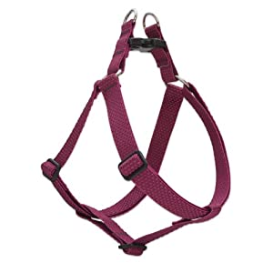 LupinePet Eco 1″ Berry 24-38″ Step In Harness for Large Dogs