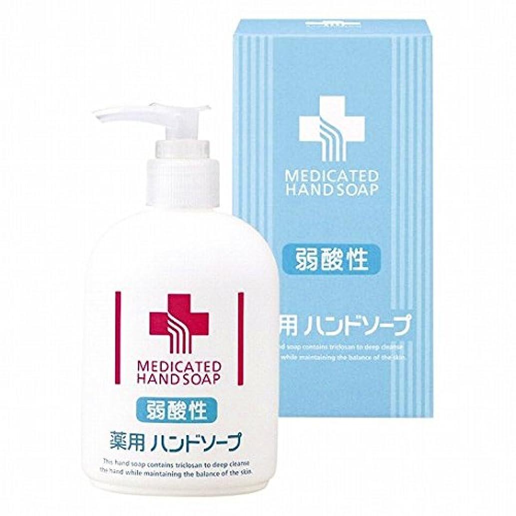出くわす愛情深い触覚nobrand 弱酸性 薬用ハンドソープ(21955102)