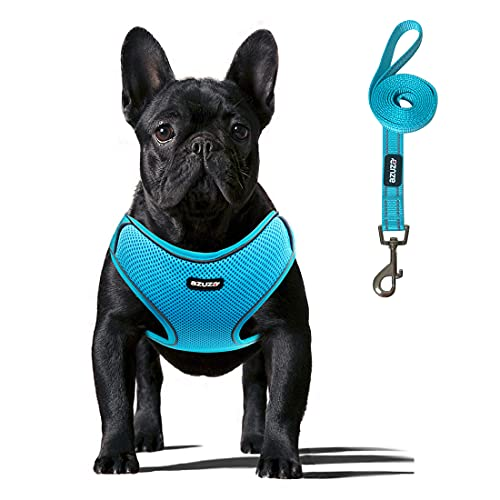 azuza No Pull Dog Harness and Leash Set Reflective Step in Vest Dog Harness with SOFE Padded Dog Harness Set for Small and Medium Dogs
