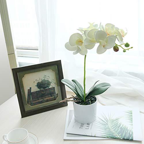 SHACOS Kunstpflanzen Künstliche Orchideen Deko Kunstblumen Orchidee im Topf Real Touch Kunstpflanze Orchidee Weiß Höhe: ca. 38cm