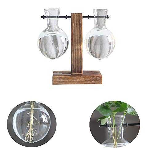 SUNJULY Lamp Glas Hydroponische Vaas, Desktop Plant Terrarium Planter Retro Houten Bloem Plant Pot Decor Voor Thuis Tuin Bruiloft Woonkamer 13.5x11.5x8cm-A C