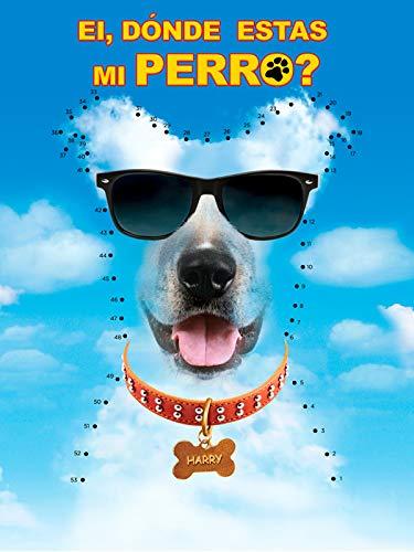Ei, Dónde Estas mi Perro?