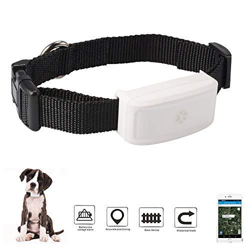 BINDEN Rastreador GPS TK911 para Perro, Gato o Cualquier Mascota, Resistente al Agua IP66, Batería por hasta 7 Días, Rastreo en Tiempo Real