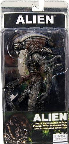 DC Direct - Figurine World of Warcraft S4   Fish-Eye & Gibbergill - 0761941282237