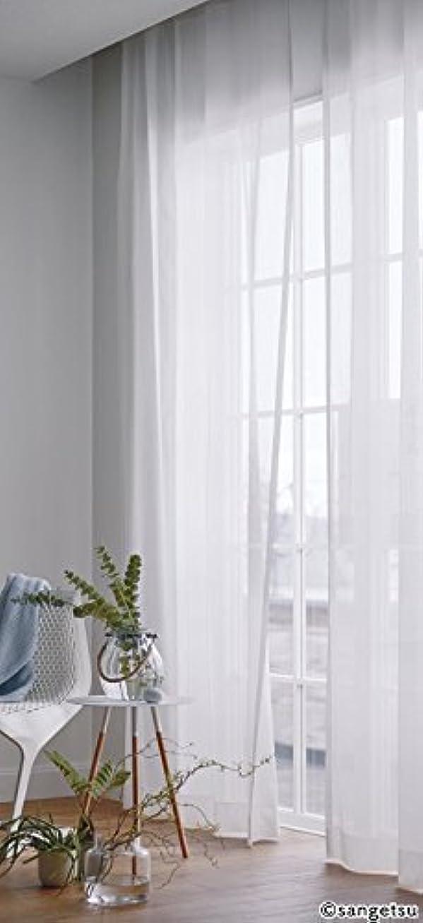 反論者パーフェルビッド資金サンゲツ ウイルスの感染源の一つである蚊を寄せ付けにくい特殊加工カーテン カーテン2.5倍ヒダ SC3870 幅:100cm ×丈:210cm (2枚組)オーダーカーテン