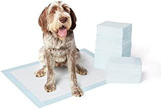 AmazonBasics Dog and Puppy Potty Training Pads, X-Large (28 x 34 Inches) - Pack of 60