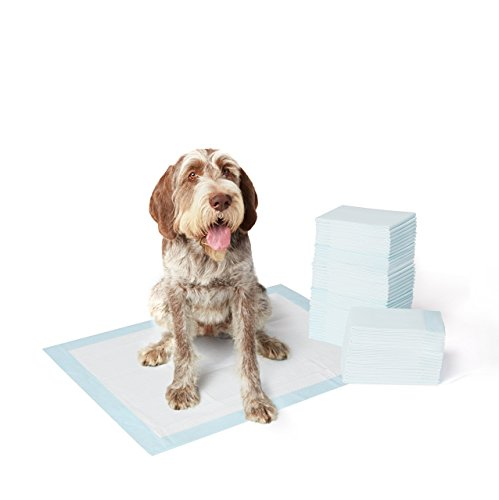 Amazonbasics Pet Training and Dog Pad Extra Large 40 Count