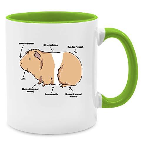 Shirtracer Tasse mit Spruch - Meerschwein Anatomie - Unisize - Hellgrün - Tasse meerschweinchen - Q9061 - Kaffee-Tasse inkl. Geschenk-Verpackung