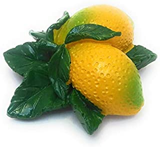 Shiani Handpainted Lemon Orange Poly Resin Fridge Magnet (Yellow)