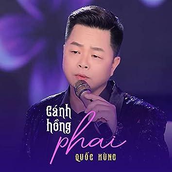 Cánh Hồng Phai