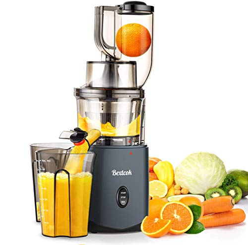 Juicer, Slow Masticating Juicer, Cold Press Juicer Machine Easy...
