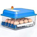 WENZHE Ei Inkubator 12 Eiern vollautomatisch Geflügelbrühe Automatische Temperatursteuerung...