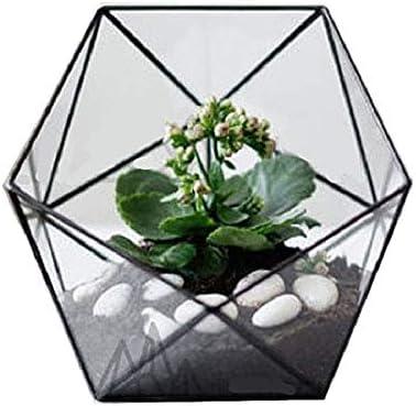 Asvert Cristal Transparente Pentagon Dodecaedro Geométrico Terrario Suculenta Terrario, Transparente (Style A)