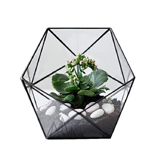DECMAY Geometrische dekorative Terrarium Cube geneigte Klarglas Pflanzer Tischplatte schwarz kleine Air Plant Halter Display Box saftige Moos Blumentopf Container (Stil 1)