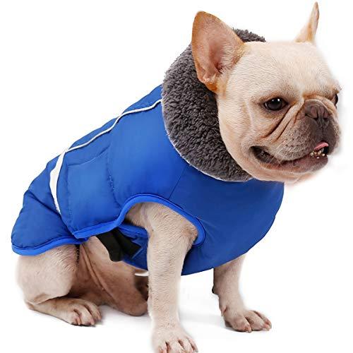 Komate Impermeable Chaqueta de Perro Abrigo de Invierno Chaqueta Cachorro Reflectante de Seguridad Pequeño Mediano Perros Grandes Traje a Prueba de Viento (S (Cofre de 30 a 50 cm), Azul)