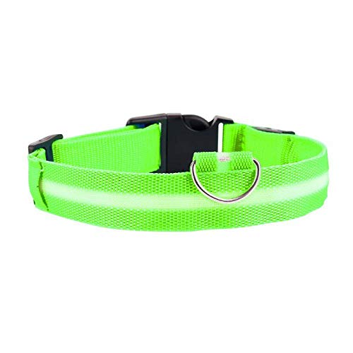 ZYYC 5 Sizes Battery Led Dog Collar Anti-Lost/Car Accident Avoid Collar For Dogs Puppies Dog Cats Collars Luminous Pet Supplies-green_28-38cm