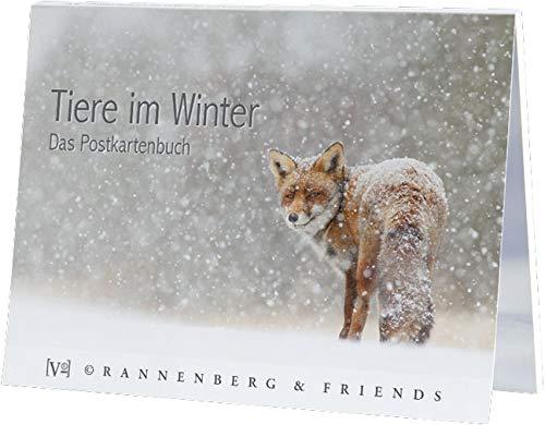 Postkartenbuch TIERE IM WINTER * Buch mit 14 Karten