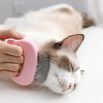 Moonmoonlala Lot de 3 peignes de massage pour animaux domestiques, chats, chiens, toilettage, épilation à la perte de poils Brosse de nettoyage en plastique sûre et douce pour chats et petits chiens