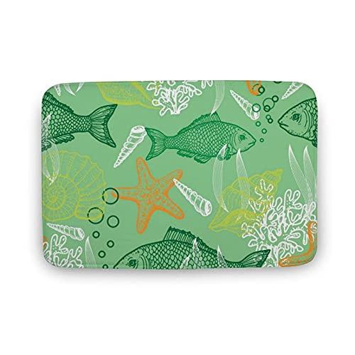 DKISEE Soft Non-Slip Door Mat Cartoon Fishes and Sea Shells Star Fishes Bath Mat Coral Fleece Area Rug Floor Mat Indoor Outdoor Mat 16 X 24 Inch