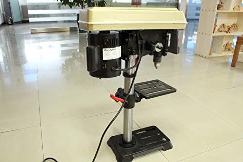 Bucktool DP2501A 6.2 Amp 10-inch 5 Speed Benchtop Drill Press